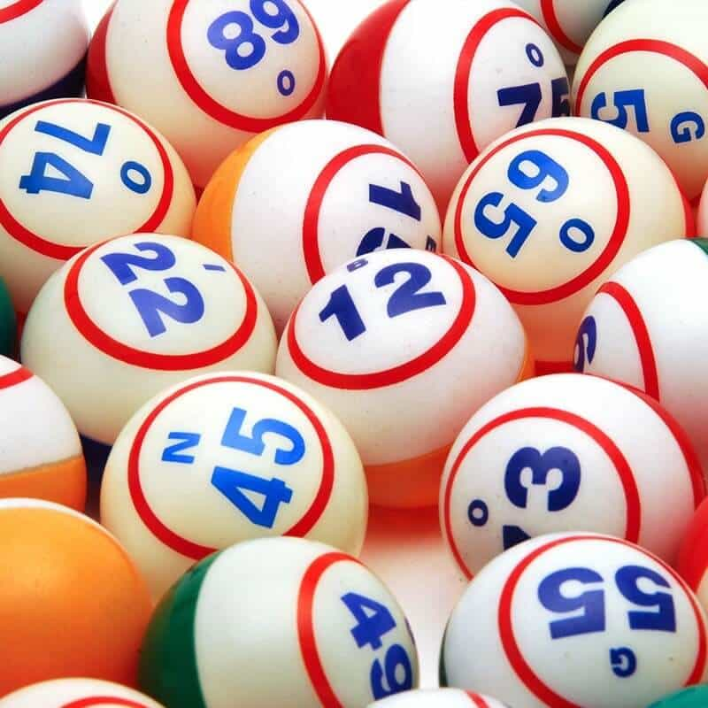 bingo-bingo必勝法